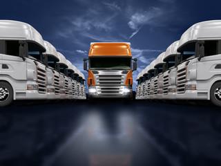 Verkehrsleiter Güterverkehrsunternehmen