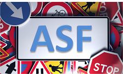 Aufbauseminar für Fahranfänger ASF